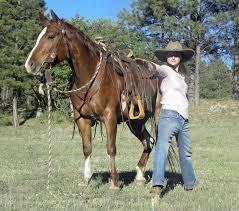 horse saddle saddle fit buckaroo balance
