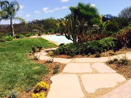 drought tolerant grass inspiration for san diego homeowners c