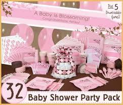 Baby Shower Decor Ideas Modern Baby Shower Themes For Girls 17845