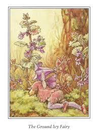 ivy home decor ground ivy fairy cicely mary barker flower fairies vintage