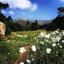 Botanic Garden Santa Barbara Santa Barbara Gardens Lotusland Santa Barbara Botanic Garden