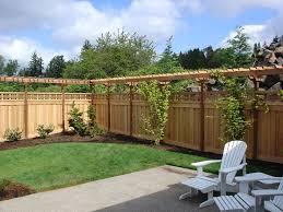 Privacy Backyard Ideas by Best 25 Trellis Fence Ideas Only On Pinterest Privacy Trellis