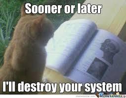 Studying Meme - studious cat by danana meme center