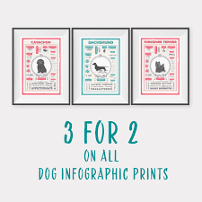 mix and match wall art set of 3 dog infographic prints home