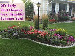 Flowers For Backyard by Diy Early Start Flowers For Flower Boxes