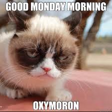 Grumpy Cat Monday Meme - good monday morning cat meme cat planet cat planet