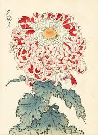 Japanese Flower Artwork - 208 best japanese flower prints images on pinterest japanese