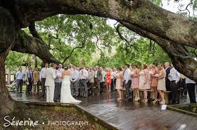 wedding venues in jacksonville fl ceremony at treaty oak park in jacksonville fl reception at