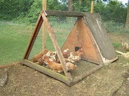 come creare un giardino fai da te come realizzare un pollaio fai da te casette per giardino ecco