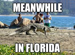 Florida Winter Meme - here are 9 jokes about florida that are actually funny