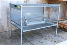 gabbia per pulcini gabbie per polli accessori per animali fratellifabbri vendita
