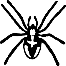 black and white cartoon spider clip art black and white cartoon