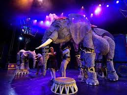 circus puppets this circus has elephants in puppet form