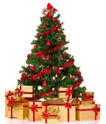 cristmas tree christmas tree recycling wilmington de