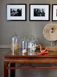 decorating with sea corals 34 stylish ideas digsdigs decorating with sea corals 34 stylish ideas digsdigs coastal