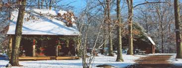 brown s christmas tree cctga brown s christmas tree farm east hton ct
