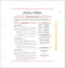one page resume one page resume template resume exle