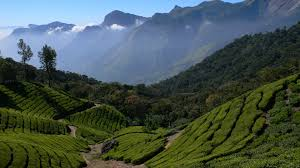 eastern and western ghats india u0027s western ghat u0027s awarded unesco world heritage status the