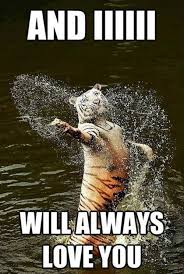 Tiger Meme - and i will always love you tiger memes and comics