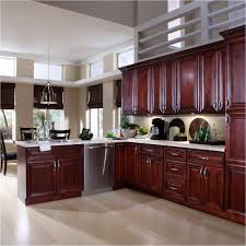 cool kitchen cabinets beautiful brown kitchen cabinets best of kitchen designs ideas