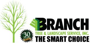 tree trimming macomb tree service branch tree landscape service