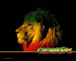 Rasta Flags Rasta Lion Wallpapers Funny Animal