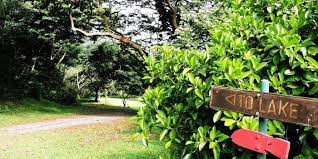 Oahu Botanical Garden by Ho Omaluhia Botanical Garden Weddings Get Prices For Wedding Venues
