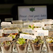 plant wedding favors diy succulent wedding favors favors decoration and weddings