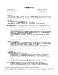 Resume With One Job Experience Simple Job Resume Examples Lukex Co