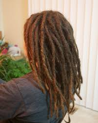 stages of dreadlocks pictures late to the party the knotty truth a white girl s dreadlock journey