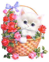 www flowers flowers wishes comments and graphics codes for friendster myspace