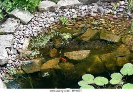 small garden pond design ideas uk small outdoor ponds waterfalls