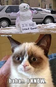 Grumpy Cat Memes Christmas - grumpy cat christmas snow man melting what makes grumpy cat happy