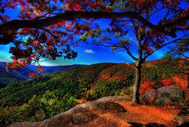 beautiful images of nature qygjxz