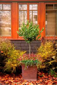 10 best front yard landscape ideas images on pinterest front