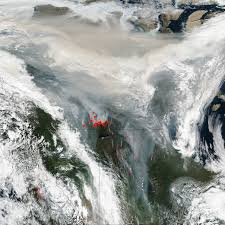 Canada Wildfire Satellite by Press Releases Earth Sciences Division 610