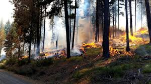 Wild Fire Cle Elum Wa by Washington Smoke Information