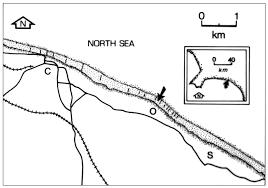 scripta geologica