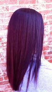 Black Hair Color Chart Best 10 Plum Red Hair Ideas On Pinterest Burgundy Plum Hair
