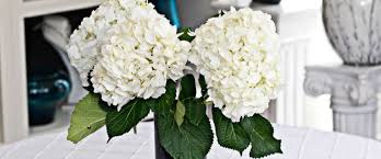 Wedding Flowers Ri Wedding Arrangements Toronto Wedding Floral Patricia