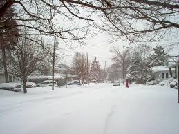 The Biggest Blizzard Baldwin Ny Willard Avenue Blizzard Winter 2006 Photo Picture