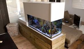 dutch room divider coral reef aquarium u2014 advanced aquarist