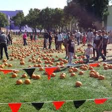 pumpkins in the park temp closed 18 photos pumpkin patches