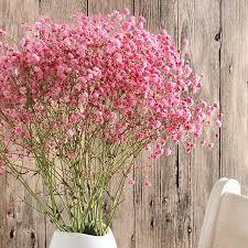 Wedding Home Decoration Aliexpress Com Buy 1 Pack Denisfen Gypsophila Dried Flowers