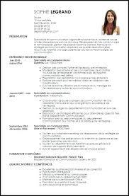 templates for business communication fashion merchandising resume sle designer template business