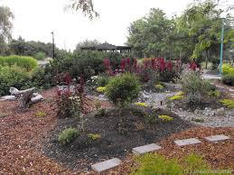 we love kamloops xeriscape desert cactus gardening