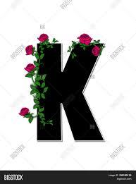 alphabet rose trellis k image u0026 photo bigstock