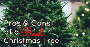 real christmas tree the pros and cons of a real christmas tree sparkles of
