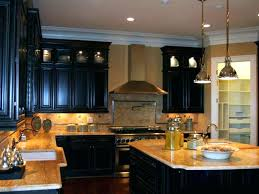 Changing Color Of Kitchen Cabinets Kitchen Cabinet Remodel Cost U2013 Colorviewfinder Co