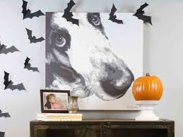 Halloween Flying Bats Flying Bats Farm Rich